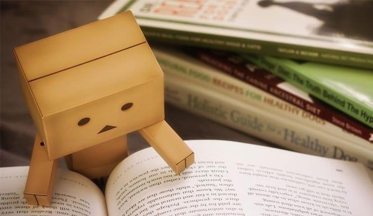 Boşanma Kararlarının Tanınması ve Tenfizi
